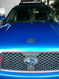 forester decal sticker decal thread merged thread page 12 subaru forester
