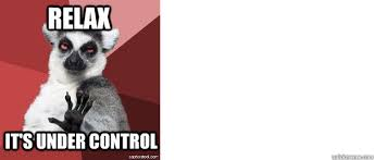 Lemur Meme - relax it s under control chilled out lemur quickmeme