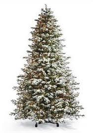 a of a winterwonderland hallmark flocked sugared spruce