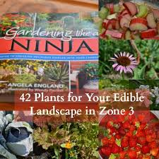 Climate Zones For Gardening - 42 plants for your edible landscape in zone 3 or higher joybilee