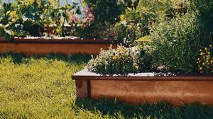 Vegetable Garden Landscaping Ideas Grow A Vegetable Garden In Raised Beds