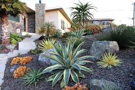 succulent front yard ideas landscape mediterranean with curb