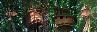 chambre d hote cabane dans les arbres cabanes de la chaussée dormez dans nos arbres