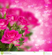 roses and hearts bunch of pink roses on background with hearts stock illustration