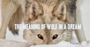 white wolf the meaning of wolf in a
