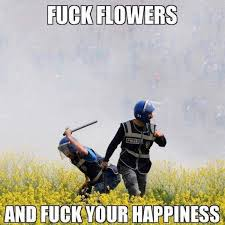 Fuck It Meme - fuck flowers and fuck your happiness meme xyz