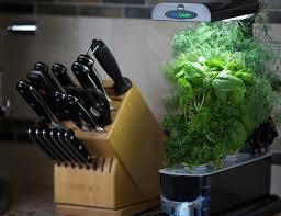 miracle gro aerogarden with gourmet herb seeds gadget flow