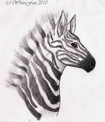 zebra head by vovix on deviantart