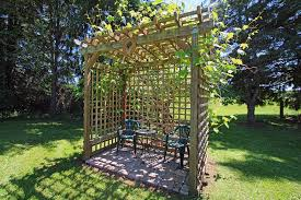 Grape Trellis For Sale Lebanon Home For Sale 39273 River Drive Lebanon Oregon 97355
