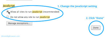 how to enable javascript in chrome whatismybrowser com