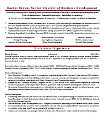 business development executive resume sles careertuners