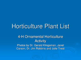 horticulture define horticulture at dictionarycom