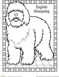 color learn dog breed coloring pages education