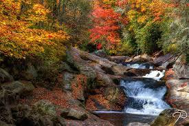 shows fall colors peak north carolina wunc