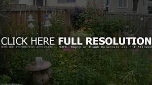 landscape architecture garden design ravishing flower bed backyard