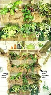 ingenious succulent garden ideas that can create easily u2022 diy home