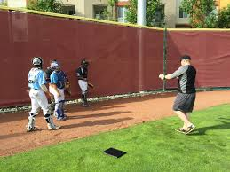 Hawaii traveling teams images Trosky baseball coaching camps consultancy jpg