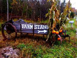 are supermarkets open on thanksgiving thanksgiving farm stand open today kristin kimball