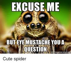 Cute Spider Meme - excuse me but eye mustache you a question egeneratornet cute