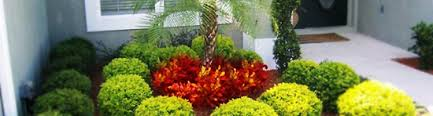 landscaping ideas for central florida pdf