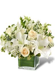 miami flower delivery healing tears white flowers flowers delivered miami