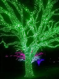 233 best light up my images on merry
