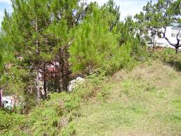 House Lots Buy Lots For Sale In Baguio Real Estate