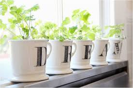 Window Sill Garden Inspiration Indoor Windowsill Herb Garden Inspirational Kitchen Windowsill
