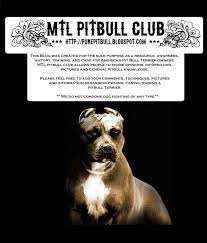mtl pitbull club raw meat diet for your pit bull or dog