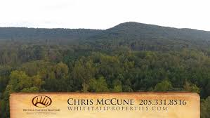 hunting land recreational land whitetail properties