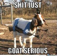 Badass Meme - funny goat memes goat serious w630