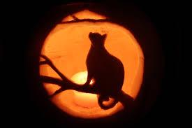halloween download marilyn manson this is halloween nightmare before christmas hd