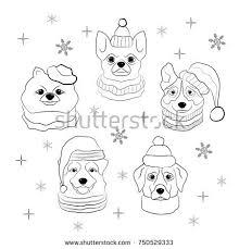 chihuahua drawing dog stock images royalty free images u0026 vectors