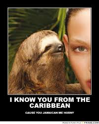 Sloth Meme Images - sloth rape meme i know you from the caribbean golfian com