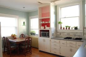 cool kitchen cabinets ikea on home design ideas with high
