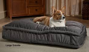 pillow top dog bed pillow top dog bed dog blanket