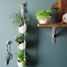 Hanging Herb Planters 3 Tier Ceramic Hanging Planter On Food52