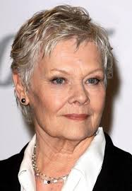 virtual hairstyles for women over 60 with fine hair judi dench mature hairstyles