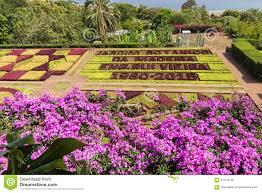 botanical garden of funchal madeira island editorial image