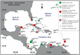 map usa bermuda map of caricomp seagrass ordered according to latitude 1