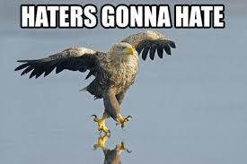 America Eagle Meme - image 39078 haters gonna hate know your meme