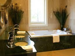 nice window between good bathroom plants on edge contemporary