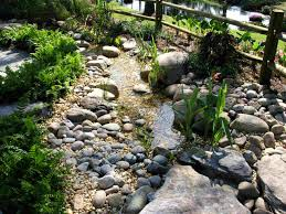important things to consider in creating dry garden design at home