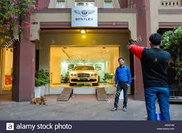bentley mumbai mumbai india 10 january 2015 dog sleeping infront of bentley