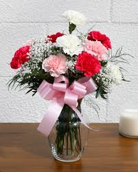 carnations flowers dozen pretty carnations fg208 in bensalem pa flower girl florist