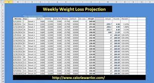 Diet Tracker Spreadsheet Weight Loss Worksheet Calorie Warrior