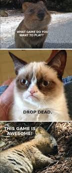 Do You Want To Play A Game Meme - grumpy cat meme archives humormeetscomics
