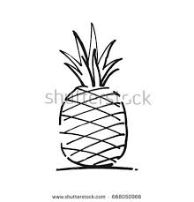 hand drawn sketch pineapple isolated black stock vector 667559197