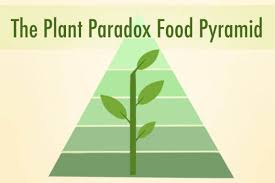 dr gundry s new food pyramid for vitality the plant paradox diet