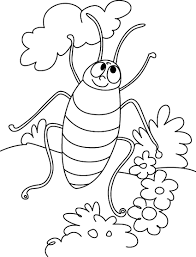 free printable cockroach coloring pages kids